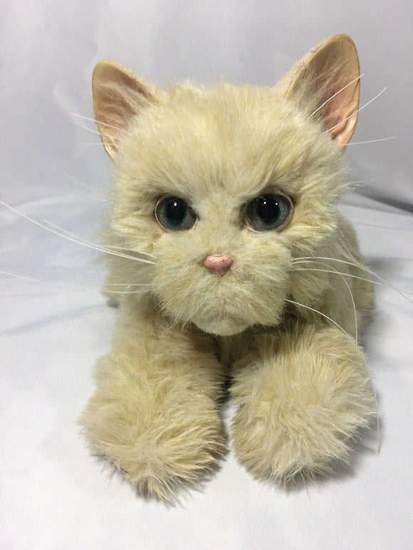 Hasbro Fur Real Friends Kitten (Cream) - DREAM Playhouse