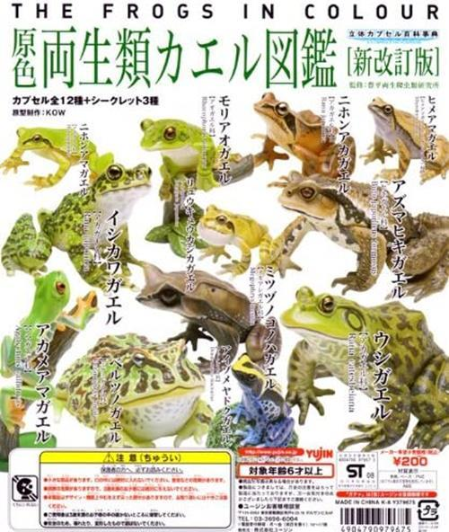 Takara TOMY Yujin The frogs in Color Gashapon figure New Collection (set of 15)