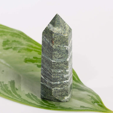 Apothecary Co Crystal Green Zebra Jasper - Polished Point