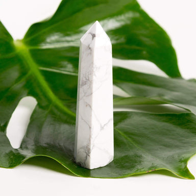 Apothecary Co Crystal Howlite (White Turqoise) - Polished Point