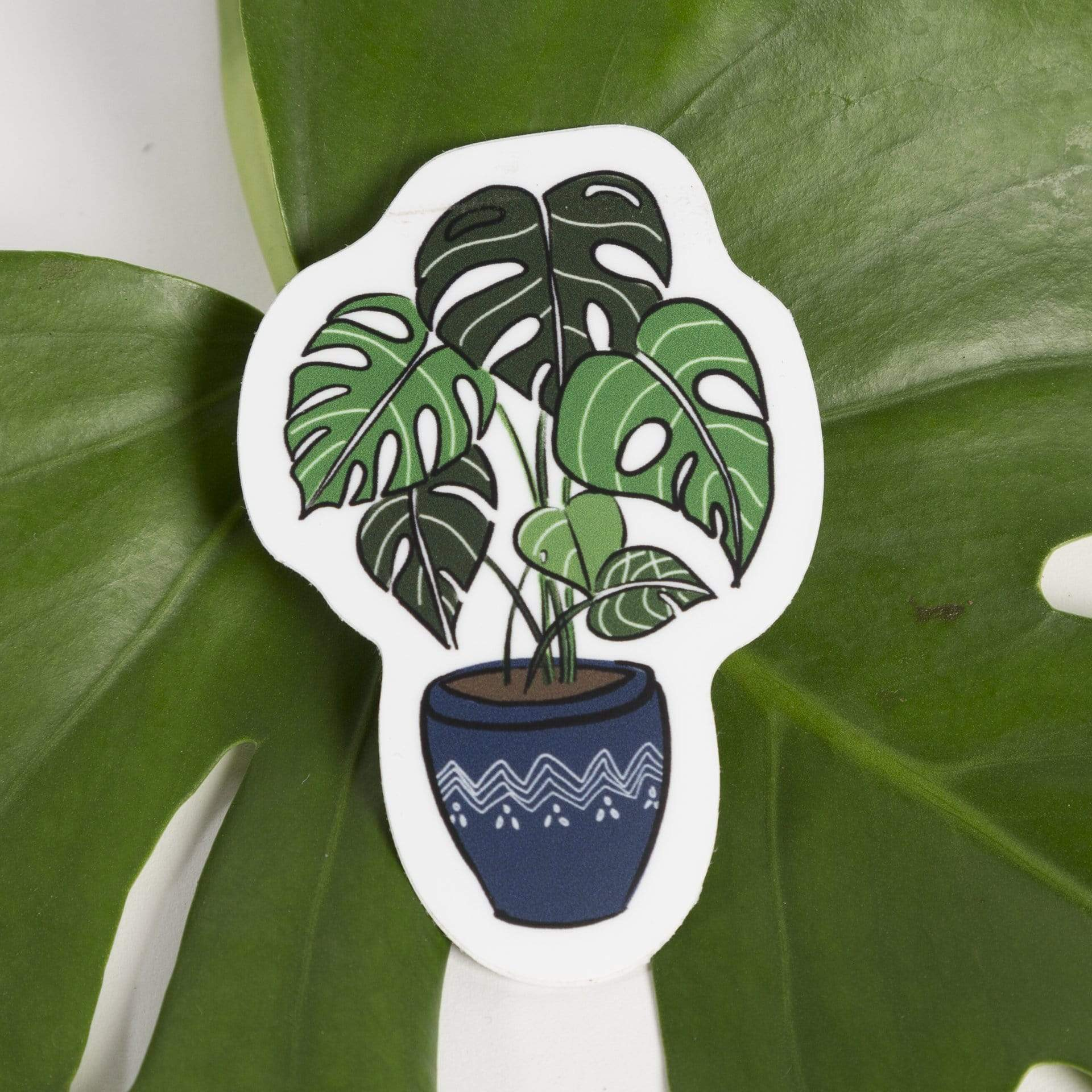 Potted Monstera Sticker - Blue - Urban Sprouts