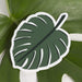 Bold Monstera Leaf Sticker - Urban Sprouts
