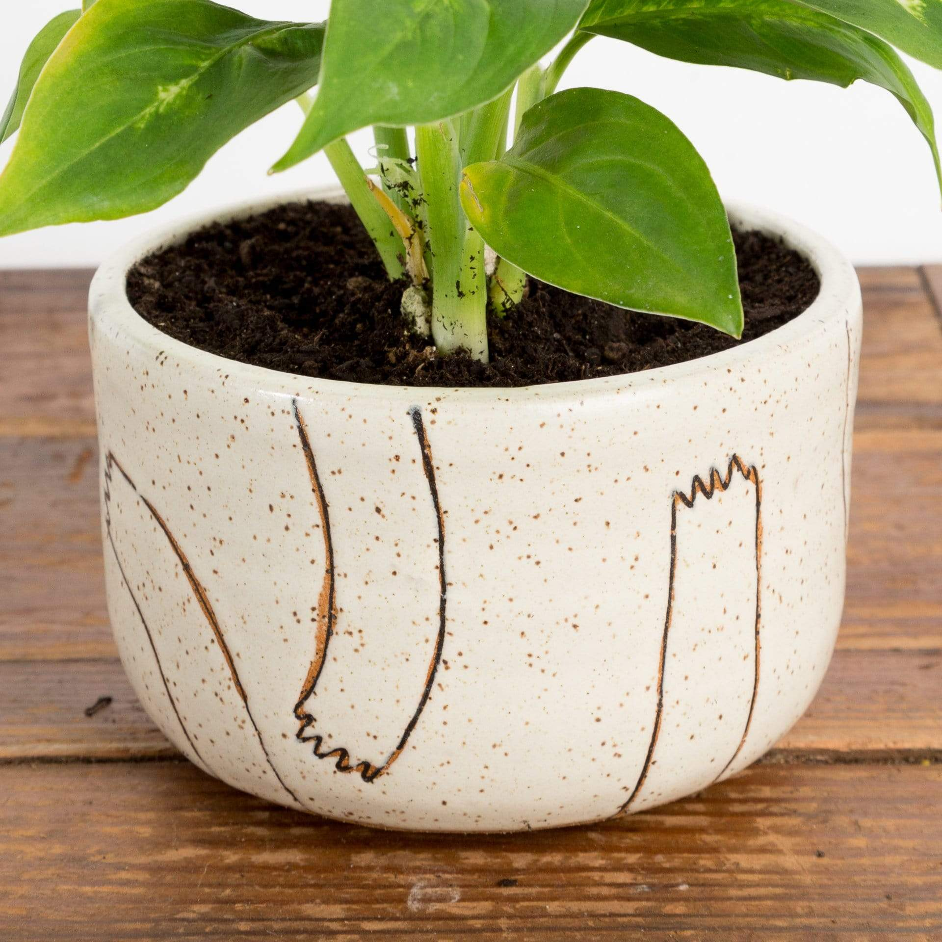 Helping Hands Short Planter - Urban Sprouts