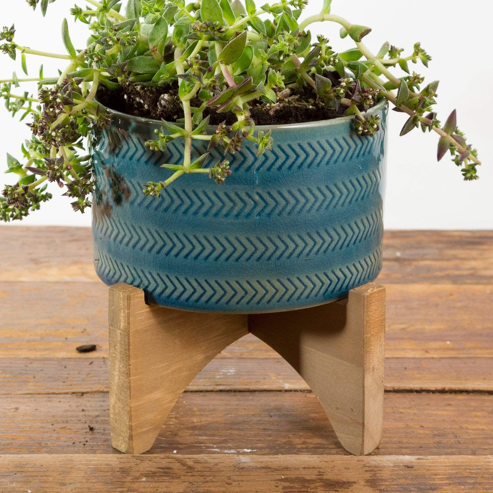 Banded Planter - Urban Sprouts