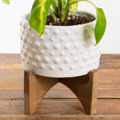 Rivetted Planter - Urban Sprouts