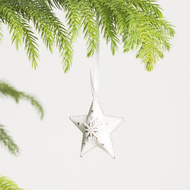Frosted Star Ornament - Urban Sprouts