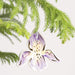 Iris Flower Ornament - Urban Sprouts