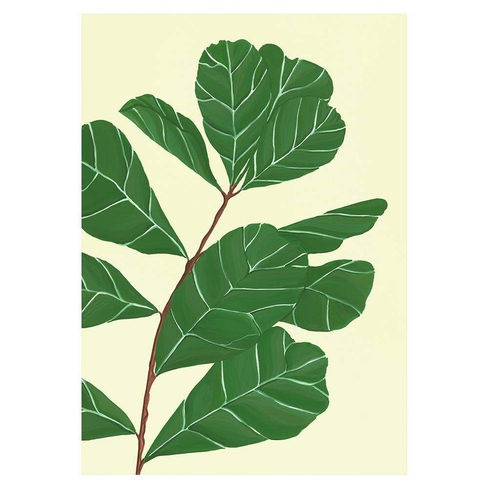 Fiddle Leaf Fig Card - Urban Sprouts