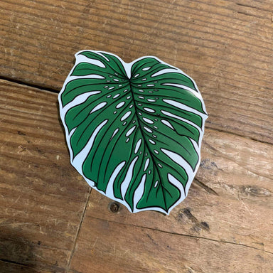 Monstera Deliciosa Vinyl Sticker (Style 2) - Urban Sprouts