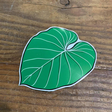 Philodendron Gloriosum Vinyl Sticker - Urban Sprouts