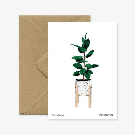 Ficus Card - Urban Sprouts