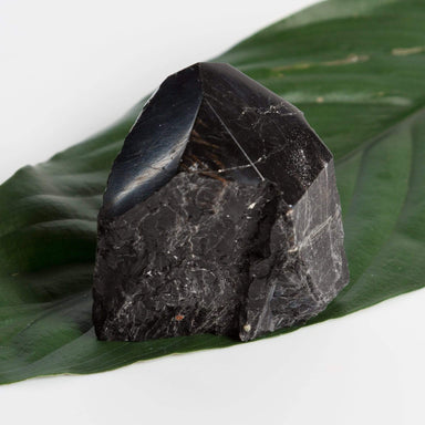 Urban Sprouts Crystal Black Tourmaline - Point Raw Cut