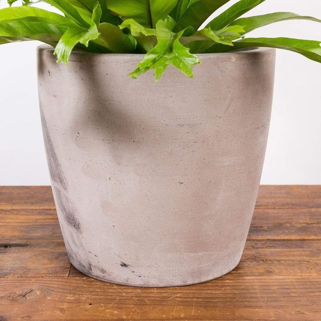 "Clay Canister Planter 9"" - Urban Sprouts"