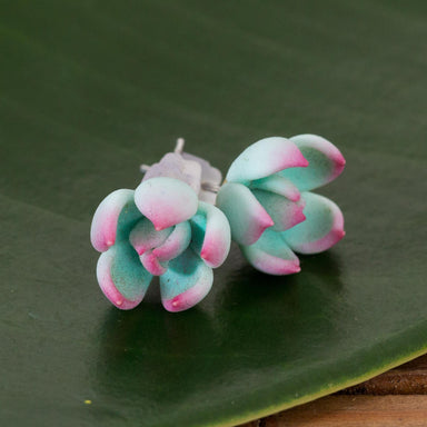 Blue And Pink Succulent Studs - Urban Sprouts