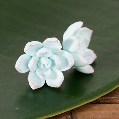Dusty Blue Succulent Studs - Urban Sprouts