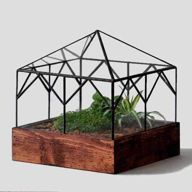 Atrium Terrarium Glass - Greenhouse - Urban Sprouts
