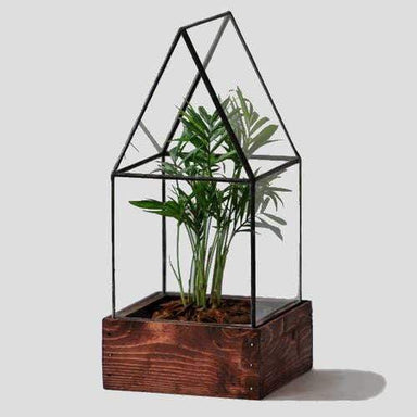 Atrium Terrarium Glass - House - Urban Sprouts