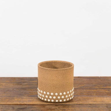 "Studded Skirt Planter 3"" - Urban Sprouts"