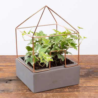"Copper House Planter 5.5"" - Urban Sprouts"