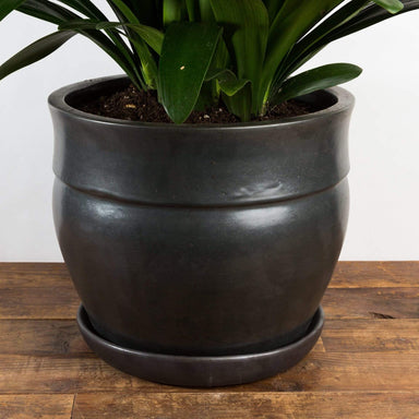 "Mid Century Crown Planter 15"" - Urban Sprouts"