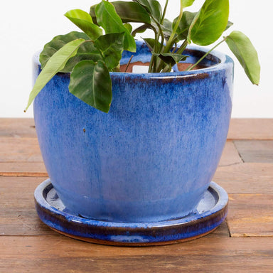 Rustic Bell Planter - Urban Sprouts