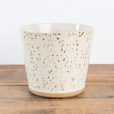 "Speckled Egg planter 6.5"" - Urban Sprouts"