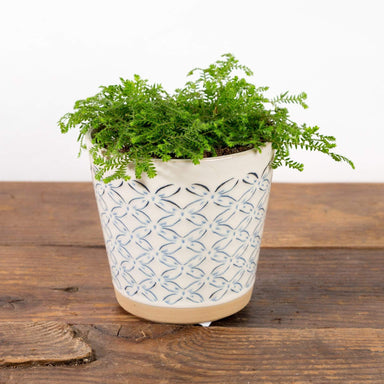"Floral Stamped Planter 4"" - Urban Sprouts"