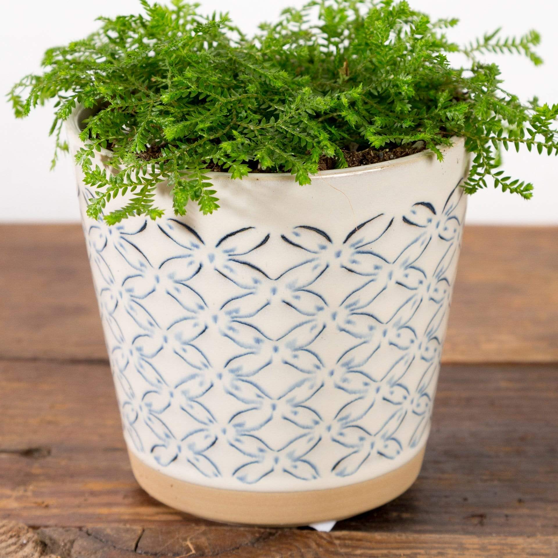 Floral Stamped Planter - Urban Sprouts