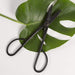 Slender Pruning Shears - Urban Sprouts