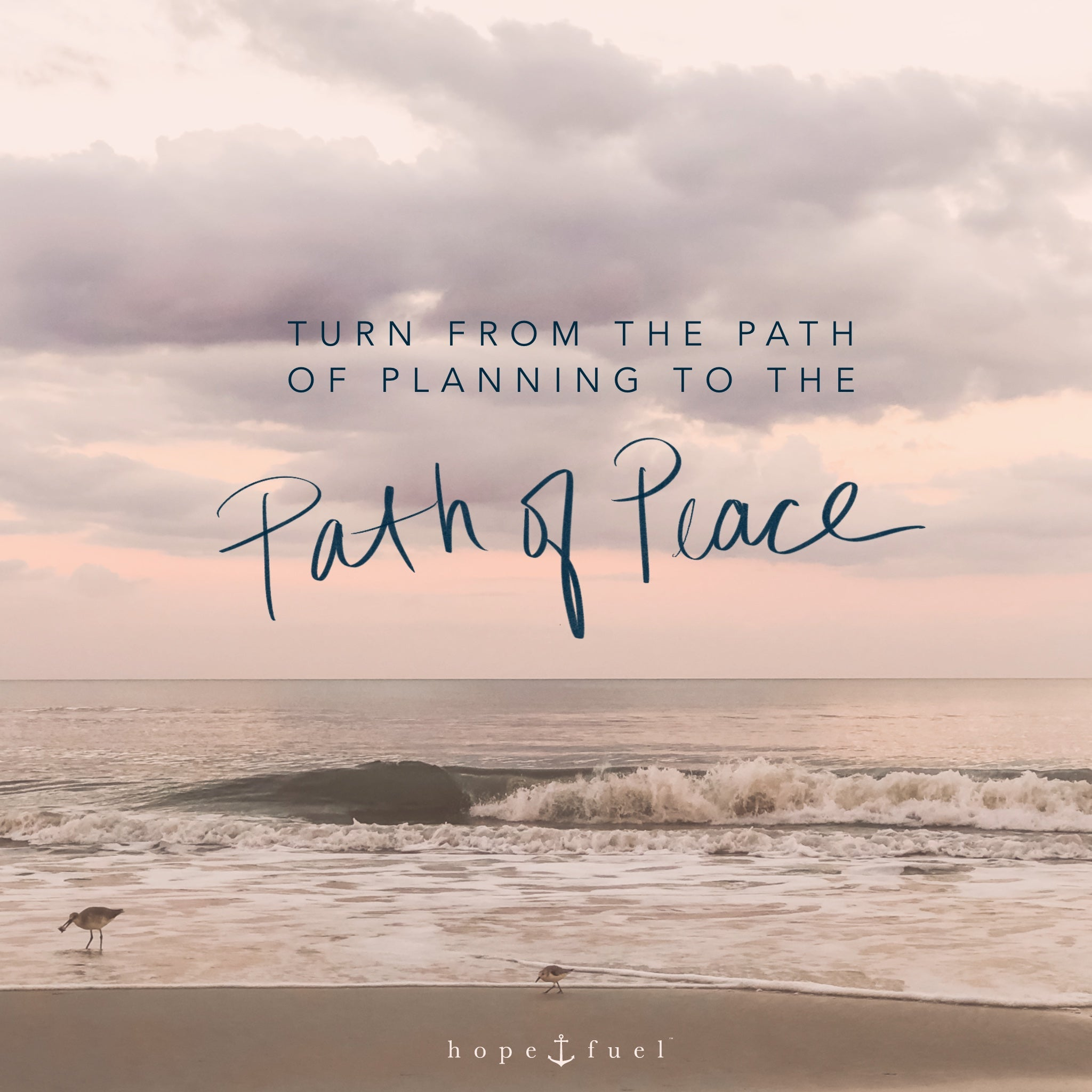 turn from the path of planning to the path of peace