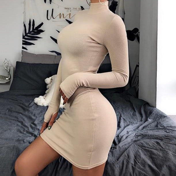 Turtleneck Long Sleeve Bodycon Mini Dress