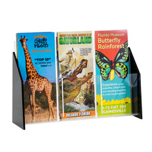 Load image into Gallery viewer, Black Acrylic Trifold Brochure Holder for Countertop, Holds 4 x 9 Brochures