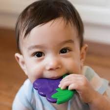 Dr. Brown's Coolees Soothing Teether, Grapes