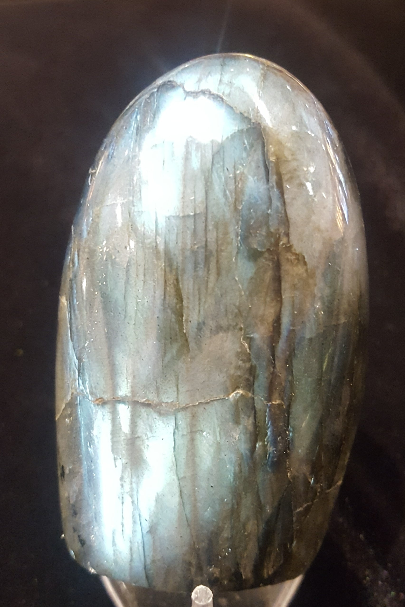LABRADORITE POLISHED FREE FORM