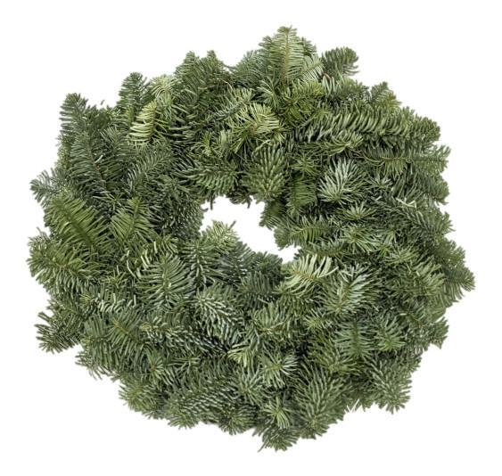 10inch Plain Wreath from The Christmas Forest