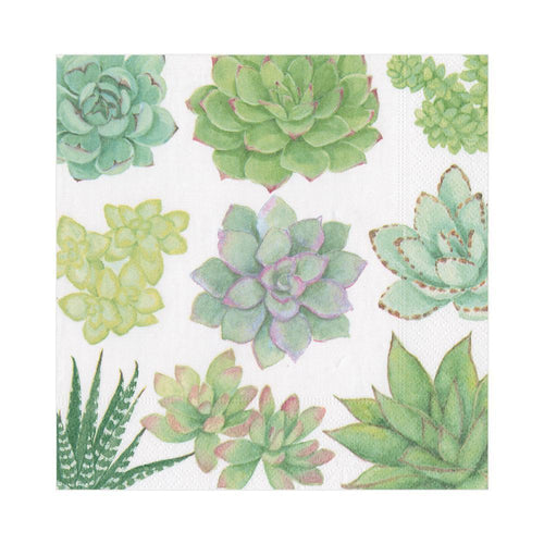 Succulents Paper Luncheon Napkins - 20 Per Package