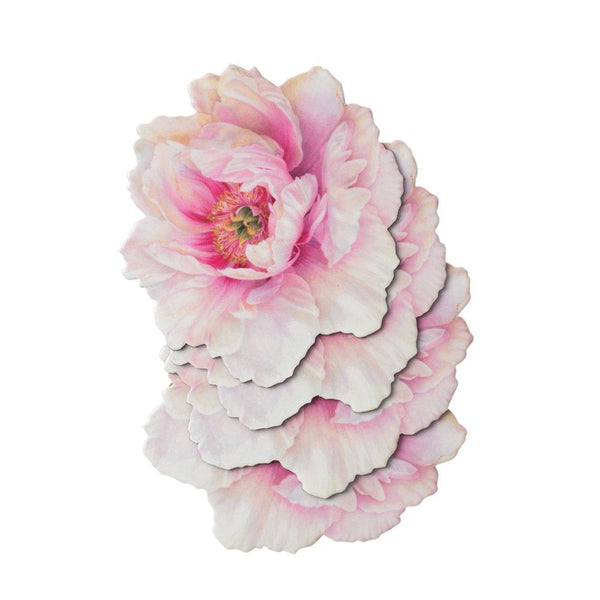 White Peony Die-Cut Coasters - 4 Per Package