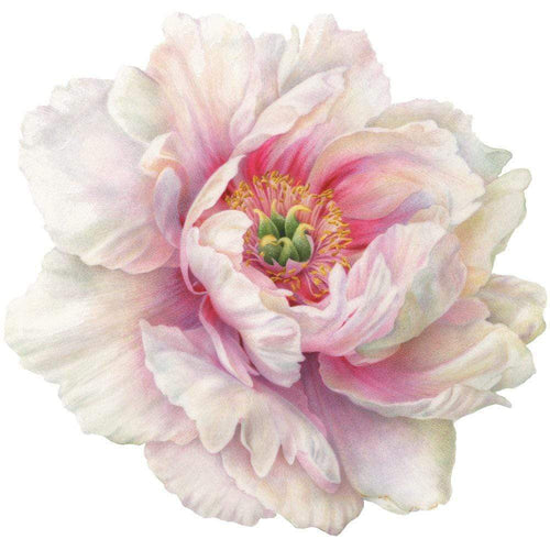 White Peony Die-Cut Placemat - 1 Per Package
