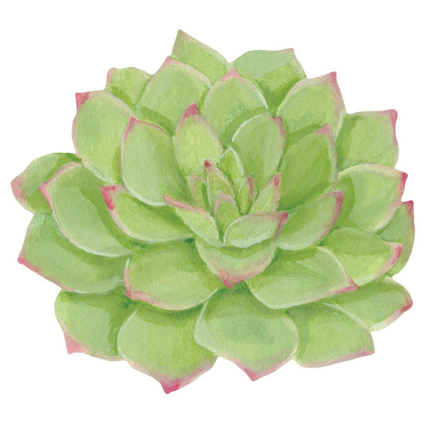 Succulents Die-Cut Placemat - 1 Per Package
