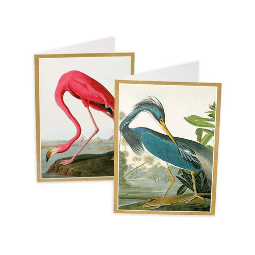Audubon Birds Boxed Note Cards - 8 Note Cards & 8 Envelopes