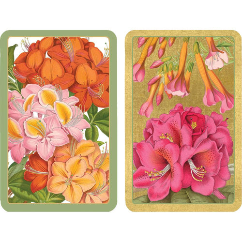 Jefferson's Garden Study Playing Cards - 2 Decks Included