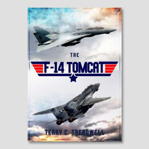 The F-14 Tomcat