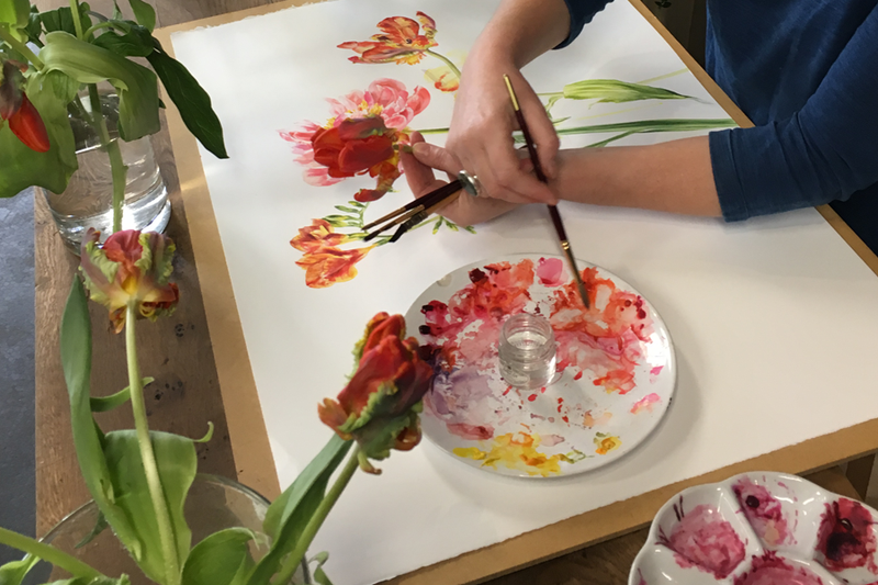 Botanical Painting with Jacqui Pestell MBE, Sunday 4th August 2019