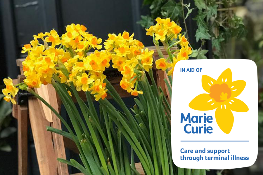 Celebration of the Daffodil, Thursday 19th March 2020