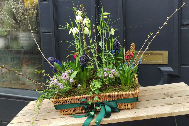 All Day Flowers for the Home in Spring, Saturday 18th April 2020