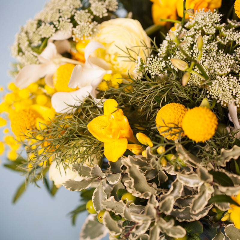 FRAGRANT, YELLOW POSY