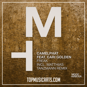 Camelphat ft Cari Golden - Freak Ableton Remake (Tech House Template)