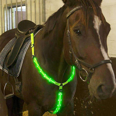 Planet Gates Dark Khaki Horse Breastplate Dual LED Horse Harness Nylon Night Visible Horse Riding Equipment Racing Equitation Cheval Belt E $
