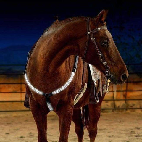 Planet Gates White Horse Breastplate Dual LED Horse Harness Nylon Night Visible Horse Riding Equipment Racing Equitation Cheval Belt