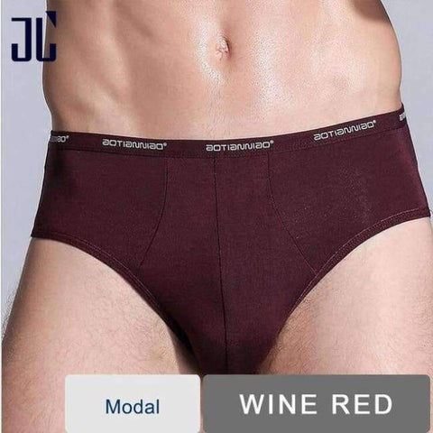 Planet Gates Wine Red / M JL Underwear Briefs Men L-5XL Plus Size Modal Male Underpants Sexy Mens Briefs Soft Breathable Sexy Gay Male Panties 4XL 5XL